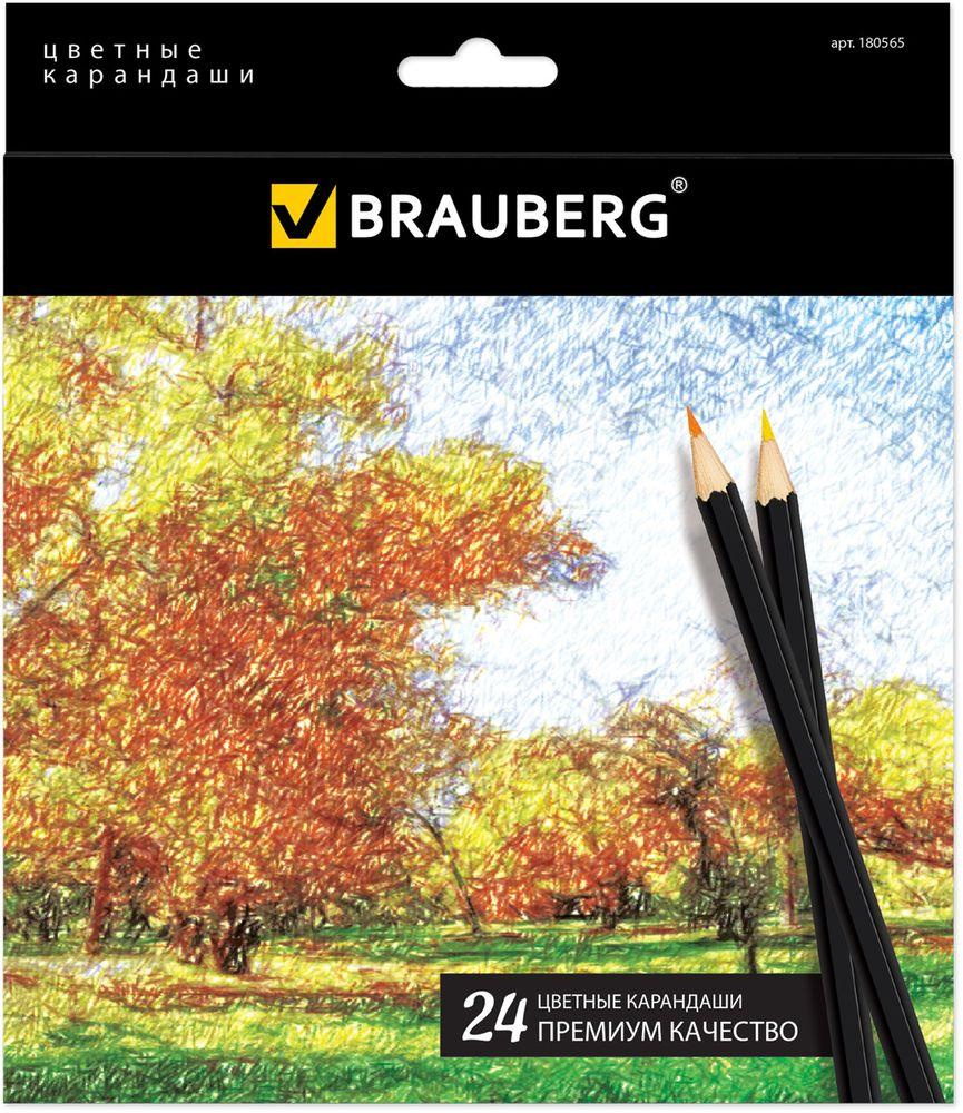 Brauberg Набор цветных карандашей Artist Line 24 цвета180В набор Brauberg Artist Line входят 24 цветных карандашей премиум качества, изготовленных из древесины. Карандаши имеют шестигранный корпус. Снабжены грифелем, изготовленным по специальной рецептуре, что обеспечивает мягкость письма и насыщенность цветовой штриховки. Высокосортная древесина и качество исполнения гарантируют легкую заточку.