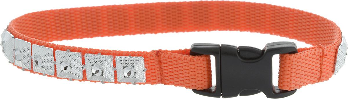 Фото - Ошейник для животных GLG Египетская сила, цвет: оранжевый, размер 1 х 24,5 см ошейник серебряный