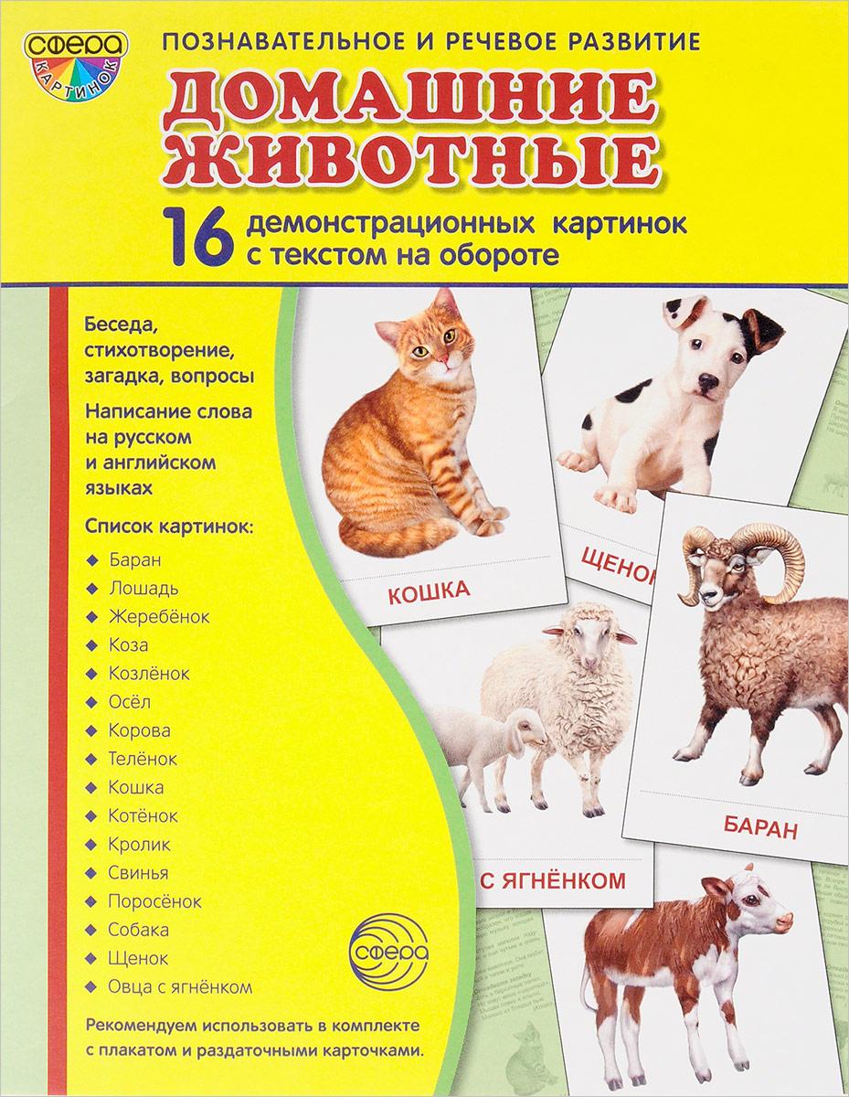Домашние животные (набор из 16 демонстрационных картинок)