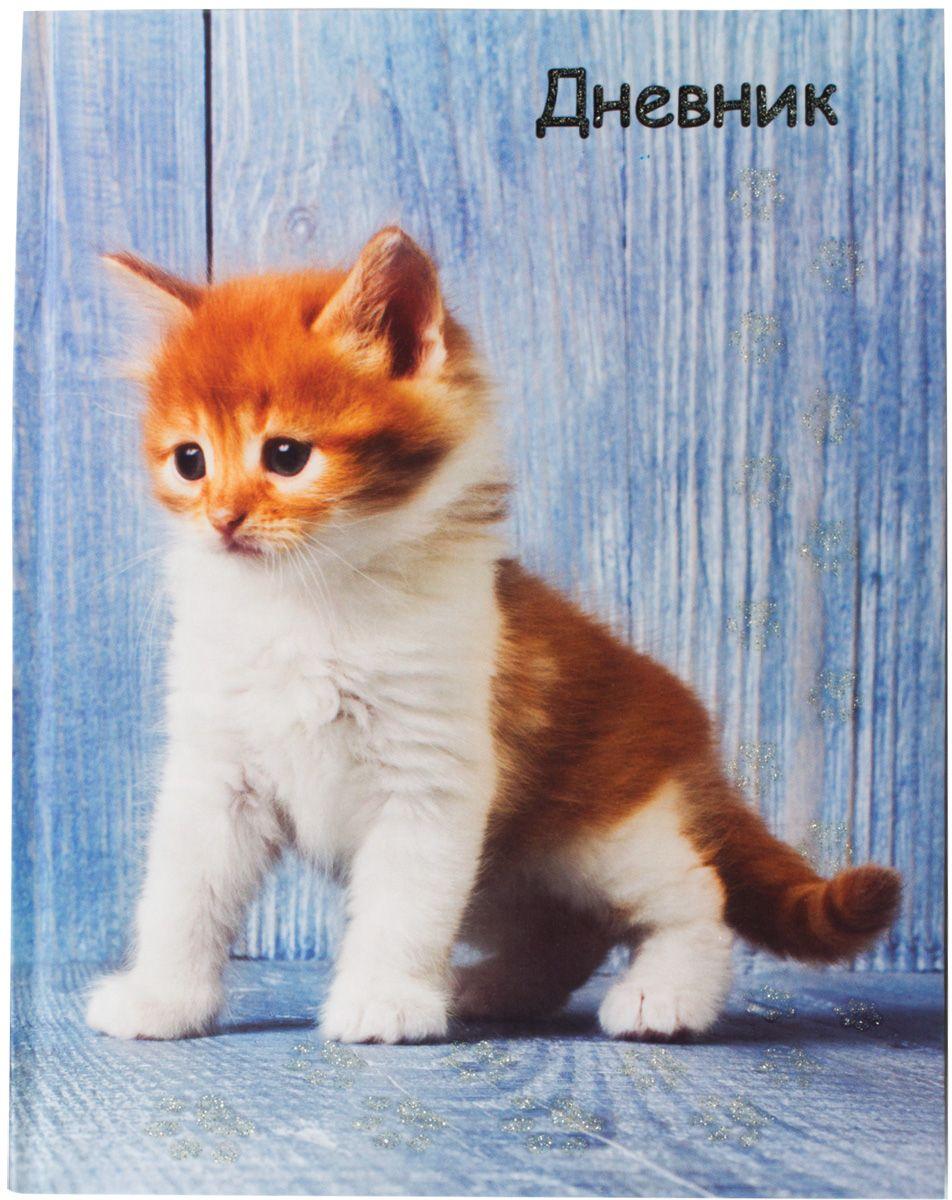 Brauberg Дневник школьный Милый котенок brauberg дневник школьный россия 2 для 5 11 классов page 7