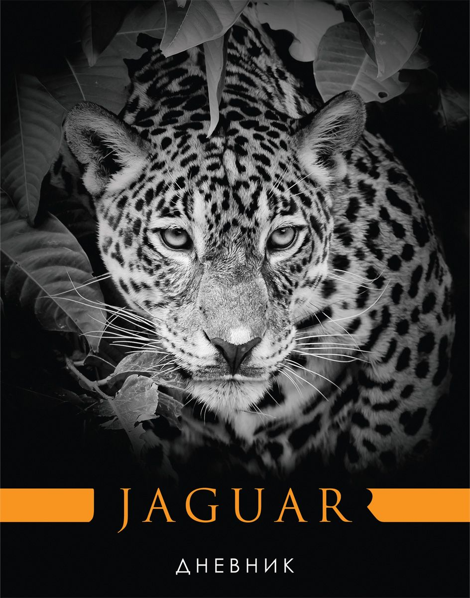 Brauberg Дневник школьный Ягуар для 5-11 классов brauberg дневник школьный милый котенок