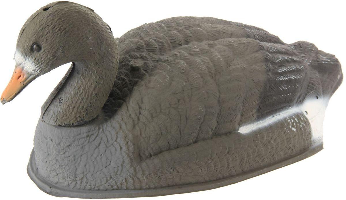 Фигура подсадная Отдыхающий белолобый гусь1144123Подсадная фигура Отдыхающий белолобый гусь выполнена из пластика, прошедшего специальную обработку, и покрыта антибликовыми красками. Материал отлично держится на воде и не крошится. Изделие имеет натуральную матовую окраску. Подсадное чучело часто используется для успешной охоты на уток, в основном на водоеме, в местах с хорошим обзором вокруг. Просто поместите его в место естественного обитания птицы, например, на воду или же в траву и примените манок. Не забудьте позаботиться о маскировке. Реалистичная подсадная фигура плюс духовой манок - и удачная охота обеспечена. Такая фигура также может использоваться для ландшафтного декора на дачном участке.