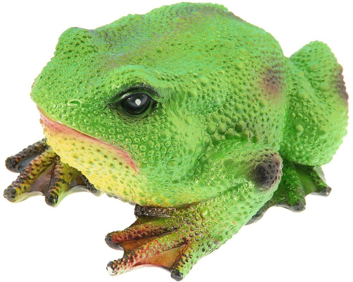Фигура садовая Premium Gips Салатовая жаба, 27 х 23 х 18 см1148480Забавные лягушата добавят новые краски в ландшафт сада. Красочная садовая фигура расставит нужные акценты: приманит взор к водоему или привлечет внимание к цветочной клумбе. Гармоничнее всего лягушки сморятся в местах своего природного обитания: располагайте их рядом с водой или в траве. Фигура из гипса экологичная, легкая и долговечная. Она сделает любимый сад неповторимым.