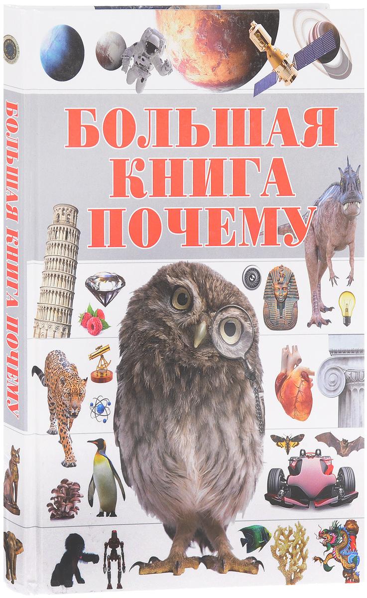 С. П. Цеханский Большая книга Почему