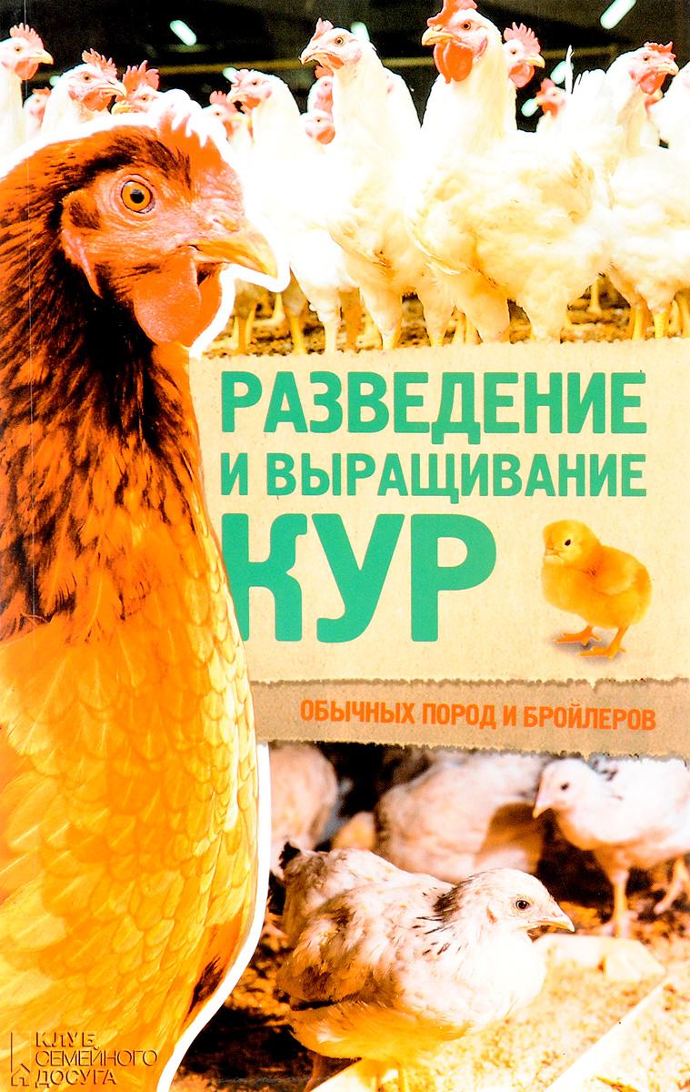 Разведение и выращивание кур обычных пород и бройлеров купить глис кур шампунь