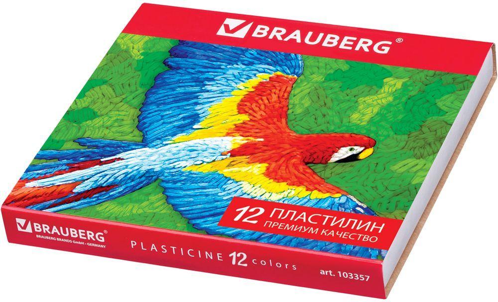 Brauberg Пластилин 12 цветов 240 г 103357103357Пластилин Brauberg предназначен для лепки и моделирования. Способствует развитию мелкой моторики у ребенка, творческих способностей, получению положительных эмоций. Высшее качество обеспечивает прекрасные пластичные свойства, мягкость, яркие насыщенные цвета.