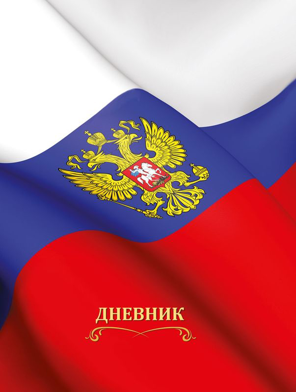 Бриз Дневник школьный Флаг России 40 листов ирина горюнова армянский дневник цавд танем