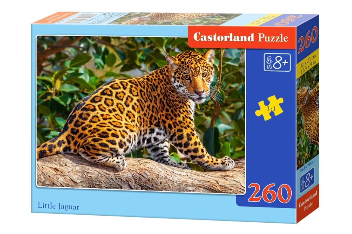 Castorland Пазл Маленький ягуар
