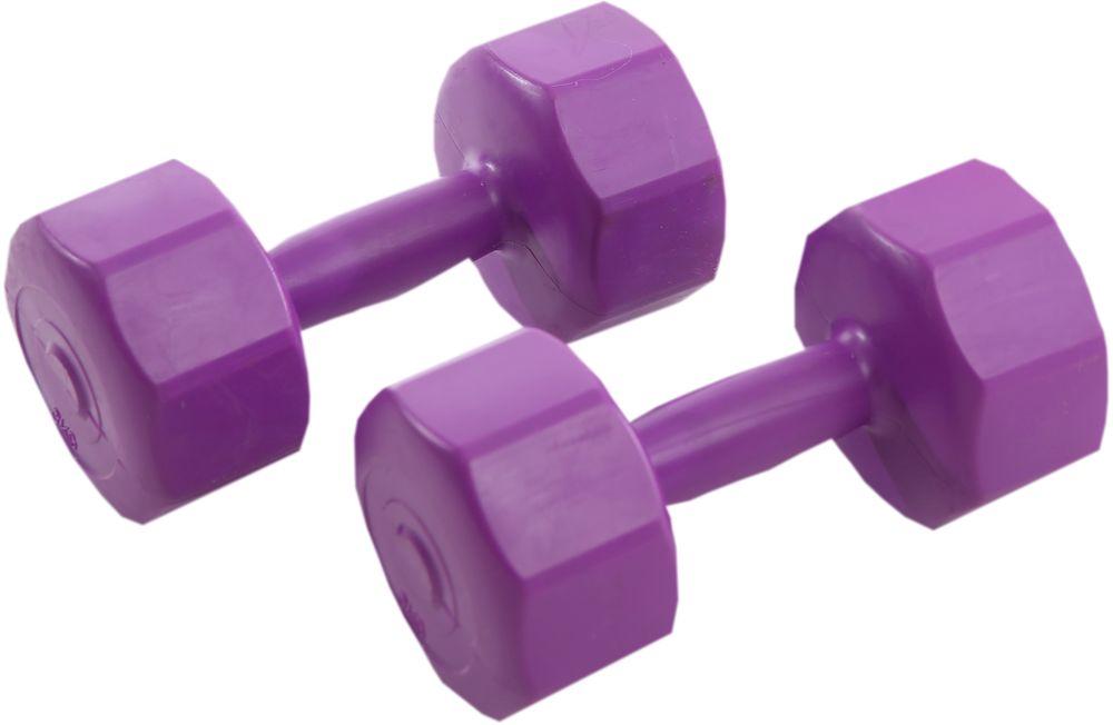 Гантели виниловые OneRun, цвет: фиолетовый, 3 кг, 2 шт495-4812Гантели OneRun идеально подходят домашних тренировок и служат для укрепления мышцы рук, груди и плеч. Внешняя оболочка привлекательной расцветки сделана из прочного ПВХ, наполнитель - композитная смесь цемента и песка. Гантели имеют специальную форму, которая предотвращает качение.Комплектация: 2 гантели по 3 кг.