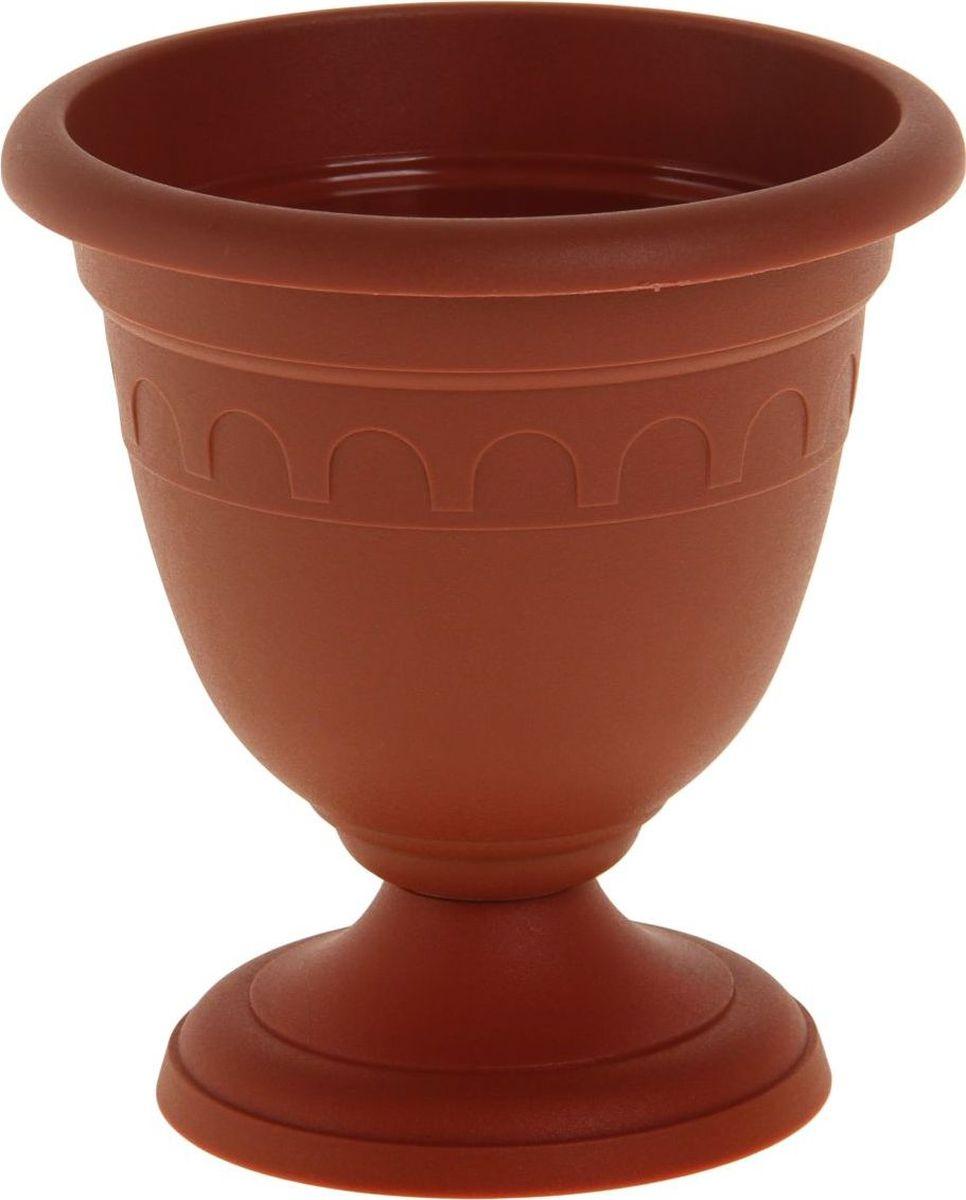 Вазон Martika Колывань, цвет: терракотовый, 0,8 л1159824Любой, даже самый современный и продуманный интерьер будет не завершенным без растений. Они не только очищают воздух и насыщают его кислородом, но и заметно украшают окружающее пространство. Такому полезному члену семьи просто необходимо красивое и функциональное кашпо, оригинальный горшок или необычная ваза! Мы предлагаем - Вазон высокий Колывань 0,8 л d=14 см, цвет терракотовый! Оптимальный выбор материала - это пластмасса! Почему мы так считаем? Малый вес. С легкостью переносите горшки и кашпо с места на место, ставьте их на столики или полки, подвешивайте под потолок, не беспокоясь о нагрузке. Простота ухода. Пластиковые изделия не нуждаются в специальных условиях хранения. Их легко чистить достаточно просто сполоснуть теплой водой. Никаких царапин. Пластиковые кашпо не царапают и не загрязняют поверхности, на которых стоят. Пластик дольше хранит влагу, а значит растение реже нуждается в поливе. Пластмасса не пропускает воздух корневой системе растения не грозят резкие перепады температур. Огромный выбор форм, декора и расцветок вы без труда подберете что-то, что идеально впишется в уже существующий интерьер. Соблюдая нехитрые правила ухода, вы можете заметно продлить срок службы горшков, вазонов и кашпо из пластика: всегда учитывайте размер кроны и корневой системы растения (при разрастании большое растение способно повредить маленький горшок) берегите изделие от воздействия прямых солнечных лучей, чтобы кашпо и горшки не выцветали держите кашпо и горшки из пластика подальше от нагревающихся поверхностей. Создавайте прекрасные цветочные композиции, выращивайте рассаду или необычные растения, а низкие цены позволят вам не ограничивать себя в выборе.