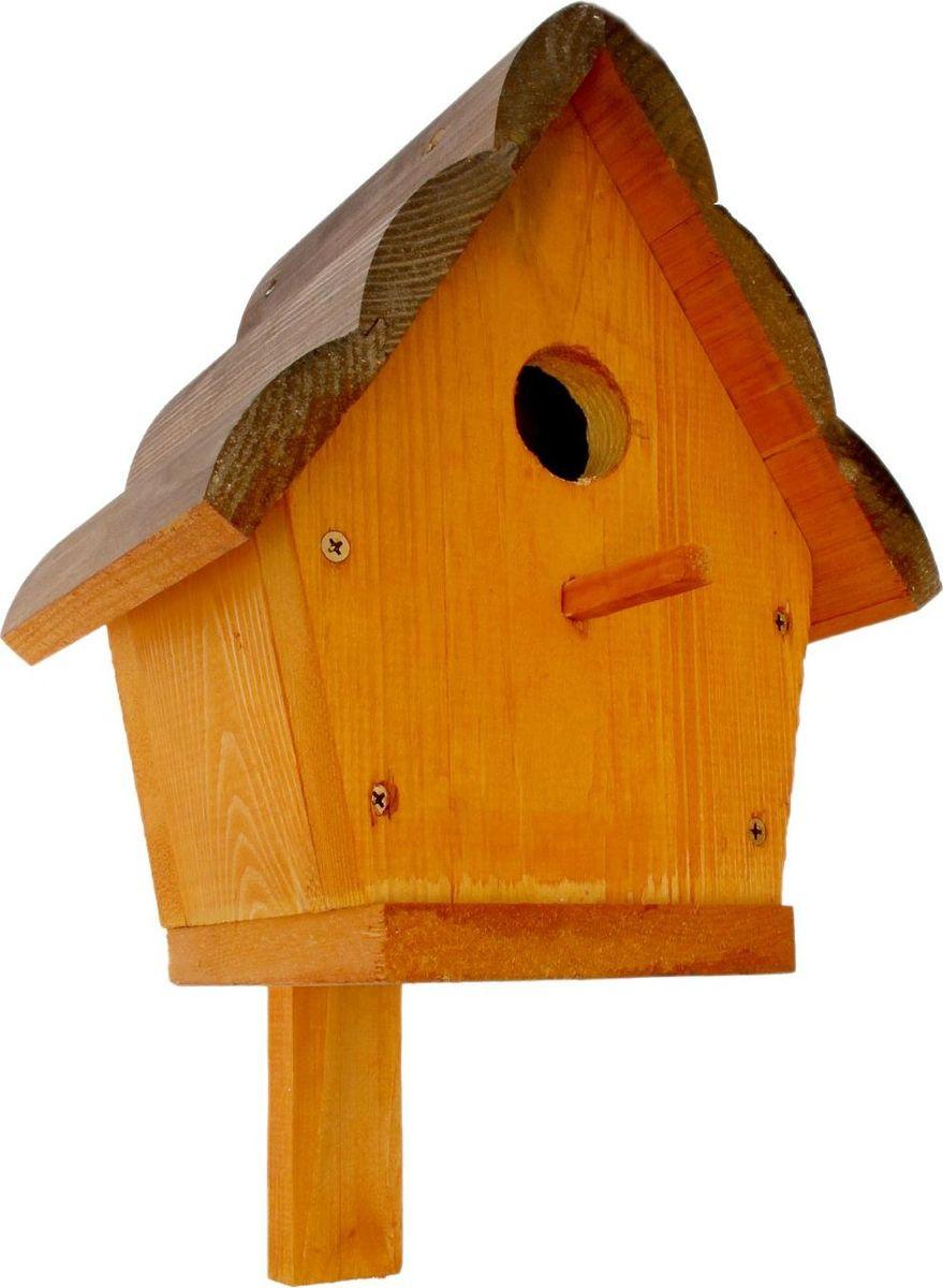 Скворечник, 18 х 24 х 28 см2385265Скворечник - отличный способ познакомить ребенка с природой и научить его бережноотносится к животным, ухаживая за ними, но не оставляя птицу в доме. Изготовлено изделие изпрочного дерева. Скворечник станет замечательным украшением дачи, а щебетание птицдобавит уюта и заставит вспомнить преимущества жизни за городом.