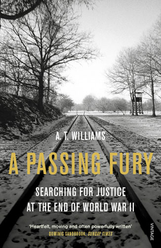 A Passing Fury justice in blue and gray – a legal history of the civil war