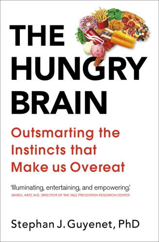 The Hungry Brain you have to stop this