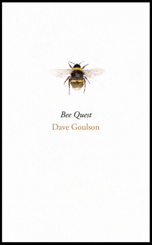 Bee Quest the elusive quest for growth economists adventures and misadventures in the tropics