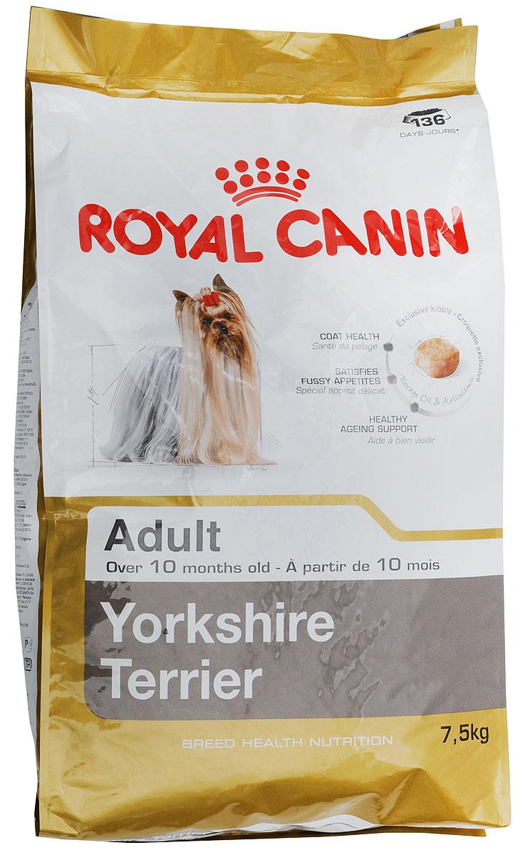 Корм сухой Royal Canin Yorkshire Terrier Adult, для собак породы йоркширский терьер в возрасте от 10 месяцев, 7,5 кг140075Сухой корм Royal Canin Yorkshire Terrier Adult - это полнорационный сбалансированный сухой корм для собак породы Йоркширский терьер и собак других мелких пород. Особенности породы: Шерсть. Тонкая шерсть, напоминающая по структуре волосы человека, и чувствительная кожа нуждаются в особой защите. Чрезвычайно тонкая и длинная (до 37 см), ниспадающая по бокам шерсть йоркширского терьера постоянно растет. Изумительно блестящая и мягкая, эта шерсть по структуре подобна человеческим волосам, не имеет подшерстка и не линяет. Сниженный аппетит и разборчивость в питании. У йоркширского терьера обоняние развито слабее, чем у более крупных собак, а вследствие особой близости к владельцу собаки этой породы зачастую становятся весьма разборчивыми в питании. Йоркширского терьера заинтересует только по-настоящему вкусный корм. Долголетие. Средняя продолжительность жизни йоркширского терьера - 15 лет, а это означает, что представители данной породы нуждаются в активной защите от возрастных проблем. У пожилых собак ухудшается качество кожи и шерсти, ослабевает функция сердца и почек, снижается подвижность суставов. Свойства корма Royal Canin: Поддержание красоты шерсти. Благодаря совместному действию масла бурачника и биотина шерсть собаки остается мягкой и блестящей. Комплекс Intensive Colour усиливает интенсивность природного окраса. Оптимальный уровень серосодержащих аминокислот, необходимых для синтеза кератина, способствует поддержанию структуры шерсти йоркширского терьера. Профилактика образования зубного камня. Благодаря хелаторам кальция и специально подобранной текстуре крокет, которая оказывает чистящее воздействие, данный продукт помогает ограничить образование зубного камня. Стимулирует аппетит. Даже у самых разборчивых Йоркширских терьеров поднимается аппетит благодаря отборным натуральным ароматам и специально адаптированным размерам и форме крокет. 