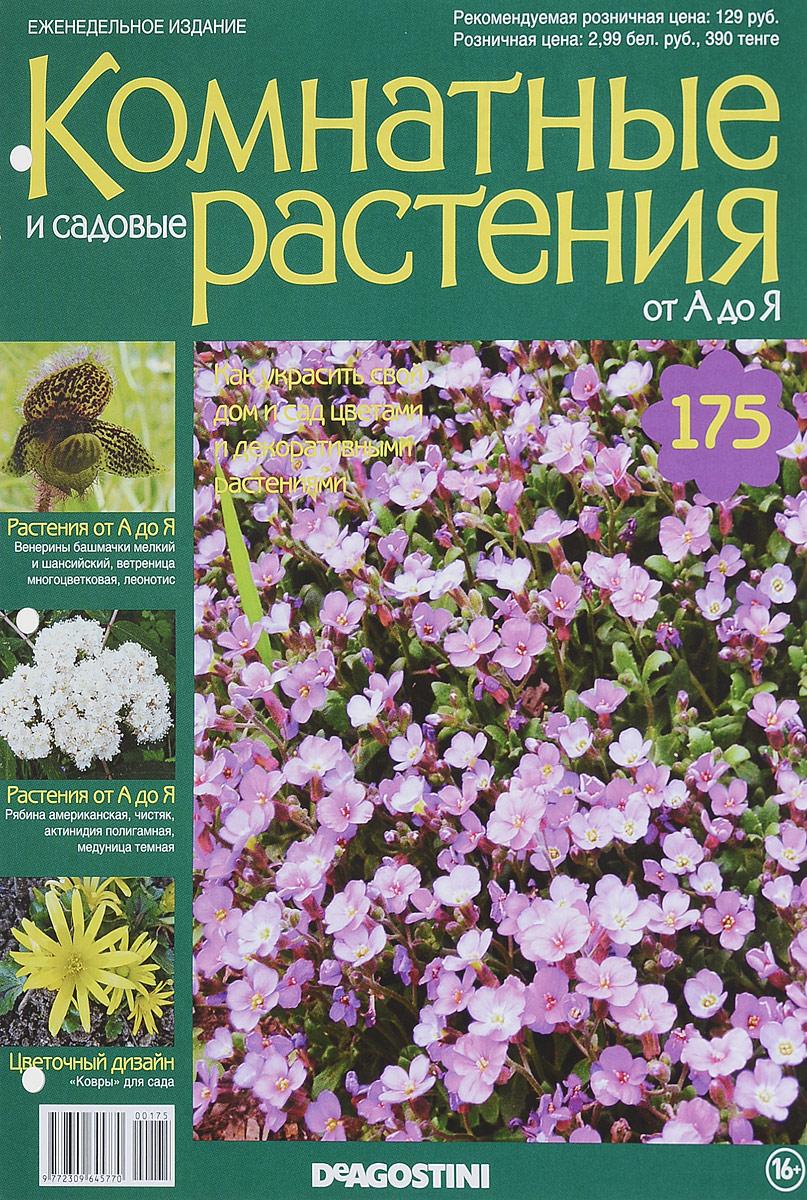 Журнал Комнатные и садовые растения. От А до Я №175 лесоповал я куплю тебе дом lp