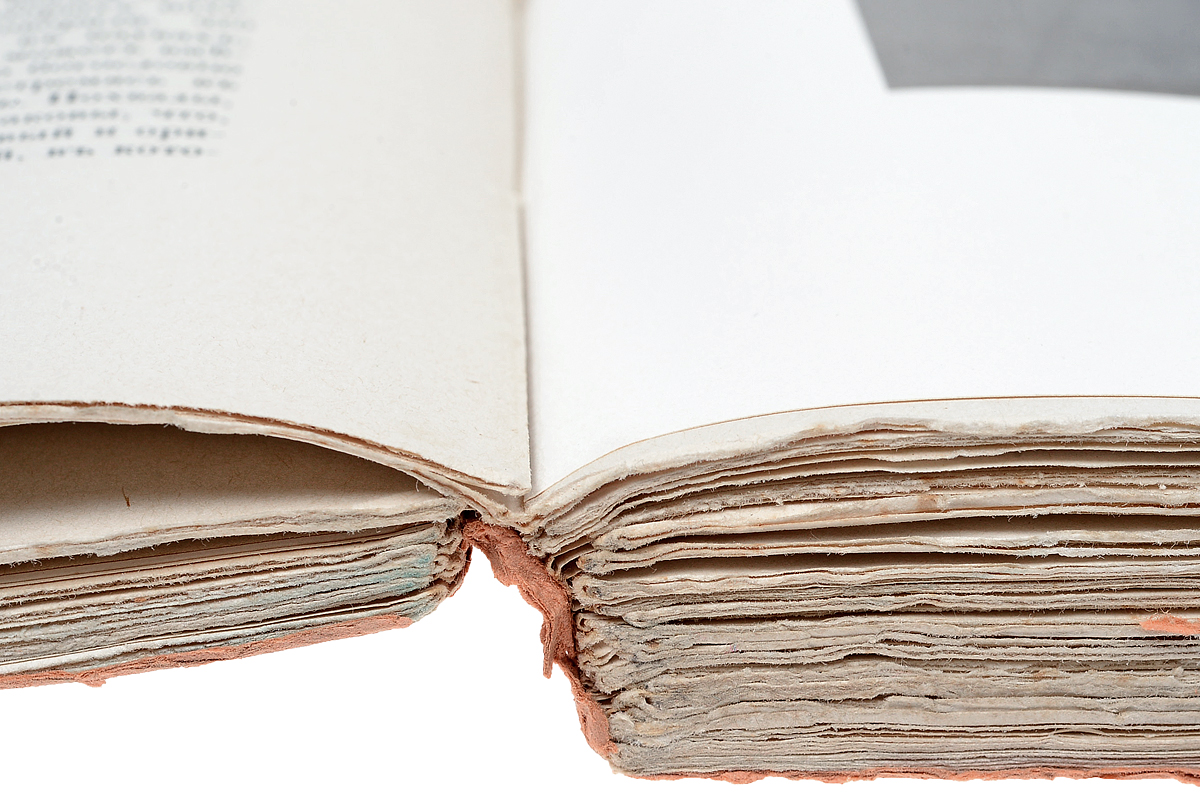 Джироламо Савонарола и его время. В 2 томах (комплект из 2 книг).