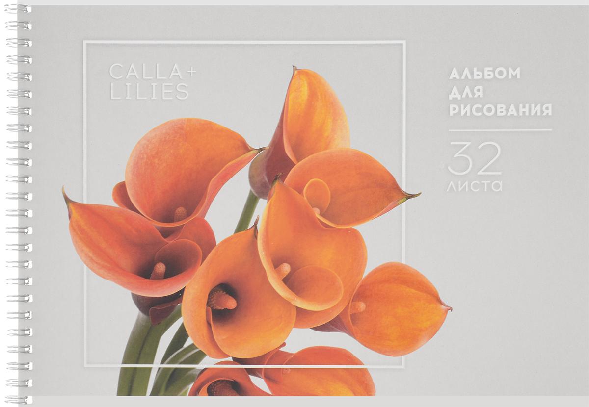ArtSpace Альбом для рисования Каллы 32 листаА32спТЛ_9175_Оранжевые КаллыАльбом для рисования ArtSpace Каллы будет вдохновлять ребенка на творческий процесс.Альбом изготовлен из белоснежной бумаги с яркой обложкой из плотного картона, оформленной изображением желтого автомобиля. Внутренний блок альбома состоит из 32 листов бумаги. Способ крепления - гребень.Высокое качество бумаги позволяет рисовать в альбоме карандашами, фломастерами, акварельными и гуашевыми красками.Во время рисования совершенствуются ассоциативное, аналитическое и творческое мышления. Занимаясь изобразительным творчеством, малыш тренирует мелкую моторику рук, становится более усидчивым и спокойным.