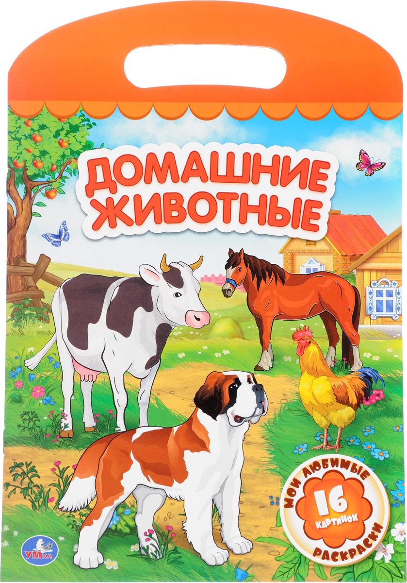 Домашние животные. Раскраска