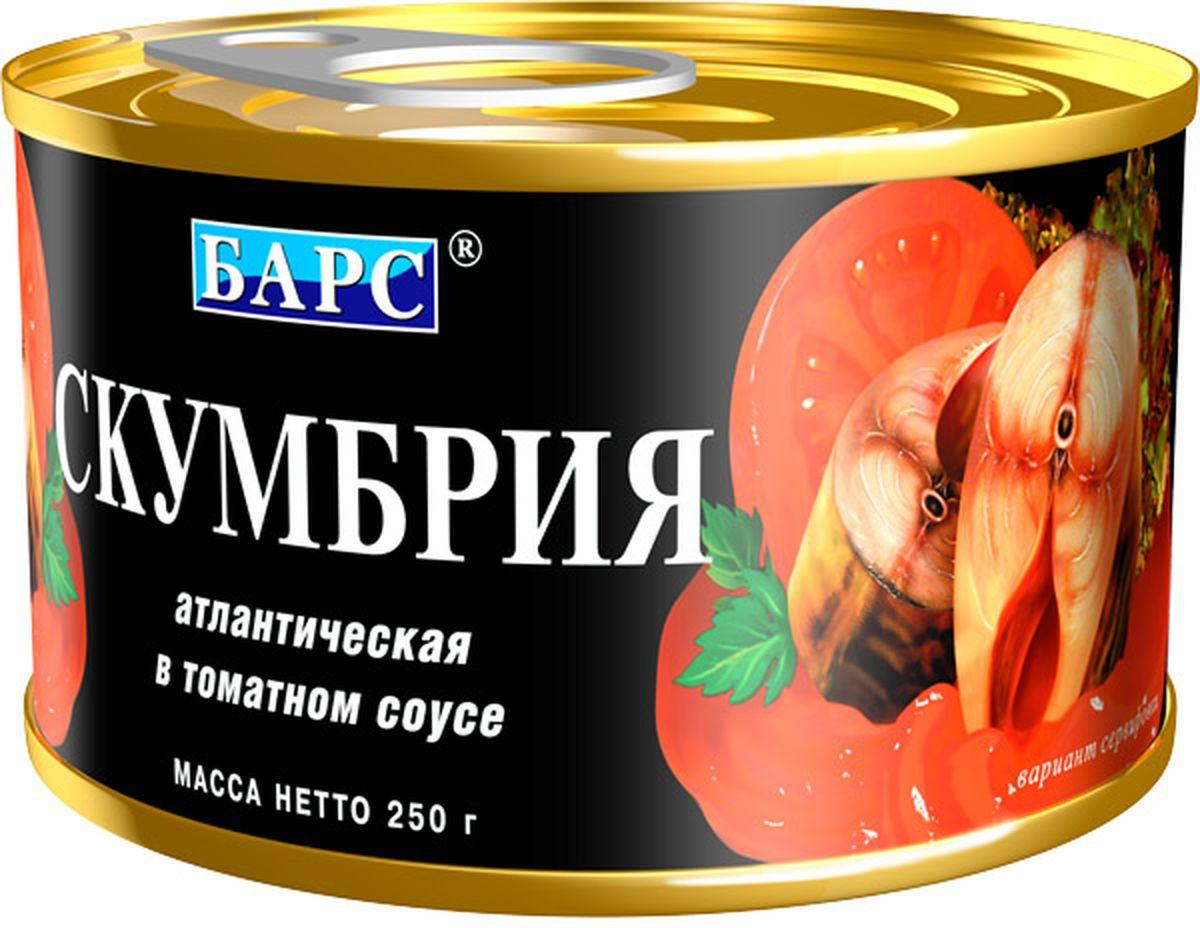 Барс скумбрия атлантическая в томатном соусе, 250 г7301Рыбные консервы компании Барс производятся на собственном современном заводе, расположенном в экологически чистом районе Калининградской области, что позволяет полностью контролировать качество продукции. Для производства консервов компания Барс покупает самую качественную российскую рыбу и имеет надежных поставщиков сырья в основных странах-экспортерах рыбы. Благодаря тщательному соблюдению рецептуры ГОСТ, высокому качеству сырья и ингредиентов, технологи компании Барс сумели добиться исключительных вкусовых качеств традиционных рыбных консервов.