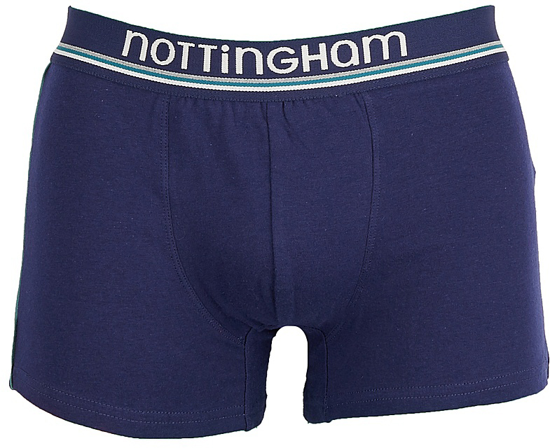 Трусы-боксеры мужские Nottingham, цвет: синий. 13294. Размер XL (52)13294Мужские трусы-боксеры Nottingham выполнены из эластичного хлопка. Модель обладает отличной воздухопроницаемостью, комфортом и свободой движений.