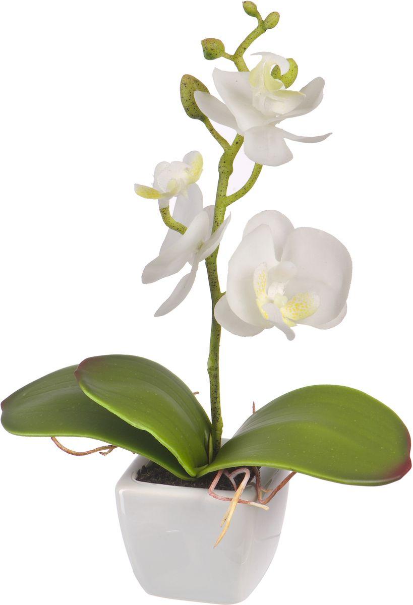Цветы декоративные Engard Орхидея, в кашпо, 5 х 5 х 18 см кашпо engard цвет желтый 12 5 х 10 х 13 см