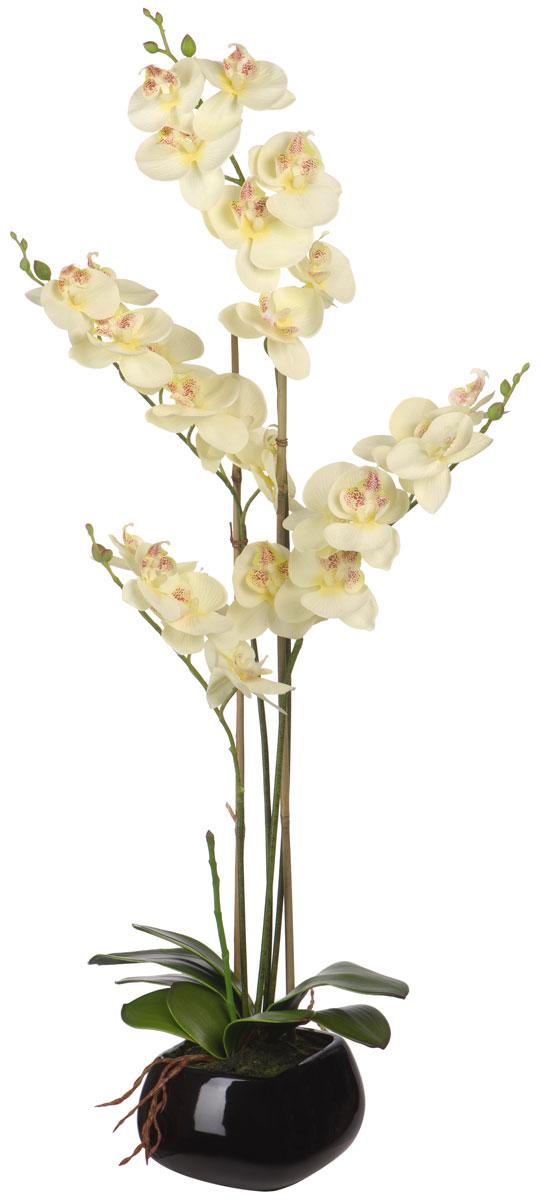Цветы декоративные Engard Орхидея, в цветочном горшке, 13 х 13 х 67 смYW-35Искусственные цветы Engard - это популярное дизайнерское решение для создания природного колорита и гармонии в пространстве. Искусственная белая орхидея в керамическом горшке выполнена из высококачественного материала, передающего неповторимую естественность и является достойной альтернативой живым цветам. Не требует постоянного ухода. Высота: 64 см.
