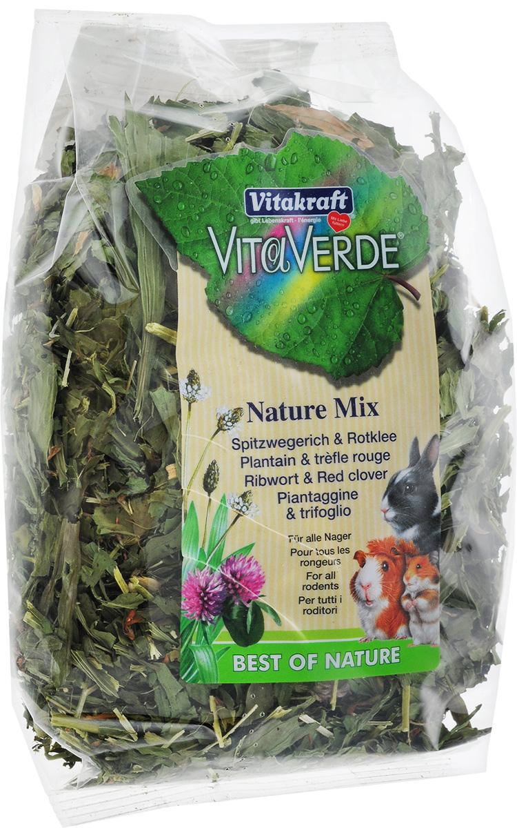 Лакомство для грызунов Vitakraft Vita Verde, подорожник и клевер, 70 г камень для грызунов vitakraft sel plus соляной