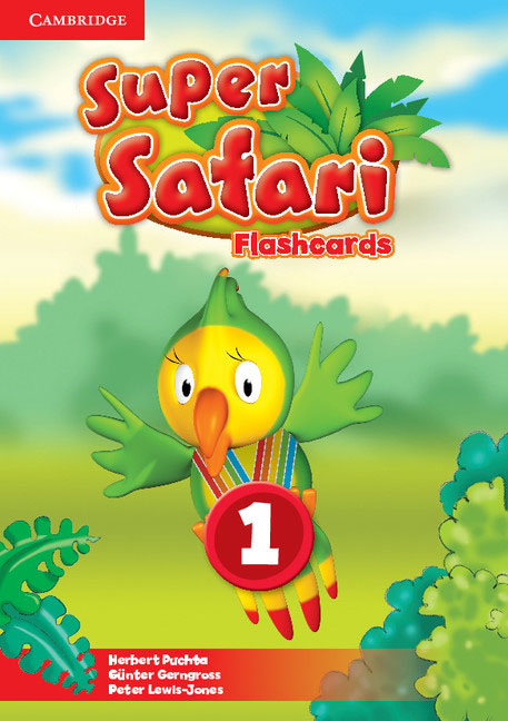 Super Safari: Level 1: Flashcards super safari level 2 flashcards