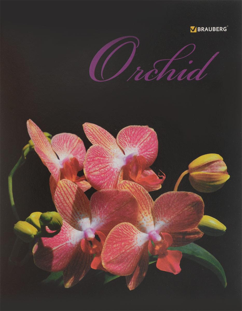 Brauberg Тетрадь Орхидеи 48 листов в клетку цвет розовый401287_розовыйТетрадь Brauberg Орхидеи на металлических скрепках пригодится как школьнику, так и студенту.Обложка изготовлена из плотного картона. Внутренний блок выполнен из белой бумаги в стандартную клетку с полями. Тетрадь содержит 48 листов.