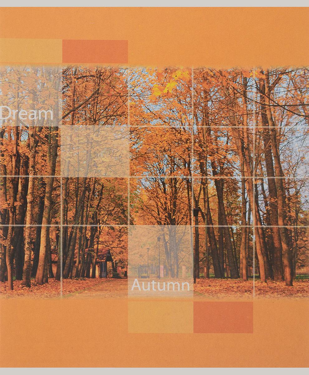 Staff Тетрадь Времена года Осень 48 листов в клетку402323_осеньОбложка тетради Staff Времена года. Осень выполнена из плотного картона, что позволит сохранить ее в аккуратном состоянии на протяжении всего времени использования.Внутренний блок тетради, соединенный двумя металлическими скрепками, состоит из 48 листов бумаги. Стандартная линовка в клетку голубого цвета дополнена полями.