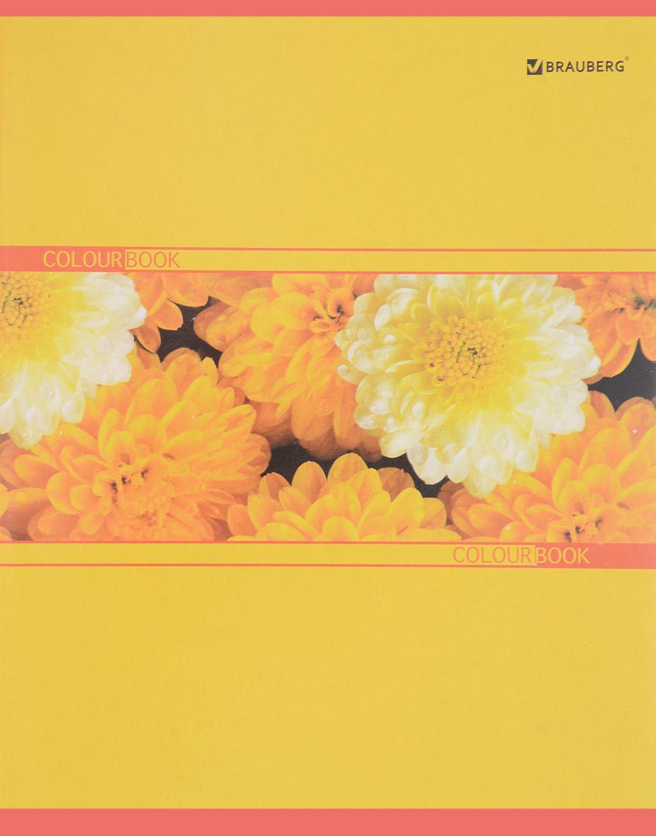 Brauberg Тетрадь Хризантемы 48 листов в клетку401283_хризантемыОбложка тетради Brauberg Хризантемы выполнена из плотного картона, что позволит сохранить ее в аккуратном состоянии на протяжении всего времени использования.Внутренний блок тетради, соединенный двумя металлическими скрепками, состоит из 48 листов белой бумаги. Стандартная линовка в клетку голубого цвета дополнена полями.Общая тетрадь с оригинальным изображением ярких цветов на обложке непременно придется по вкусу школьникам и студентам. .