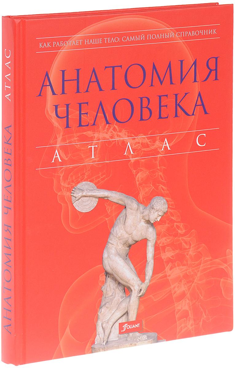 Питер Абрахамс Анатомия человека. Атлас анатомия человека русско латинский атлас