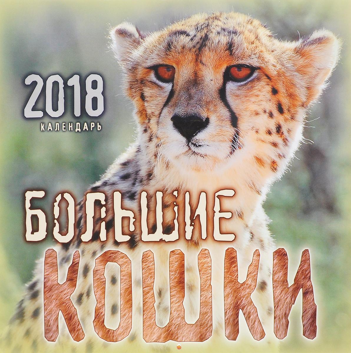 Календарь 2018 (перекидной). Большие кошки бедуайер камилла де ла большие кошки