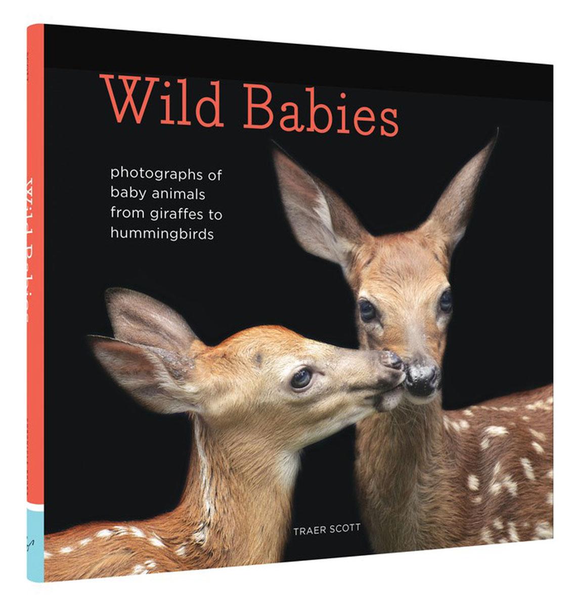 Wild Babies a wild life a visual biography of photographer michael nichols