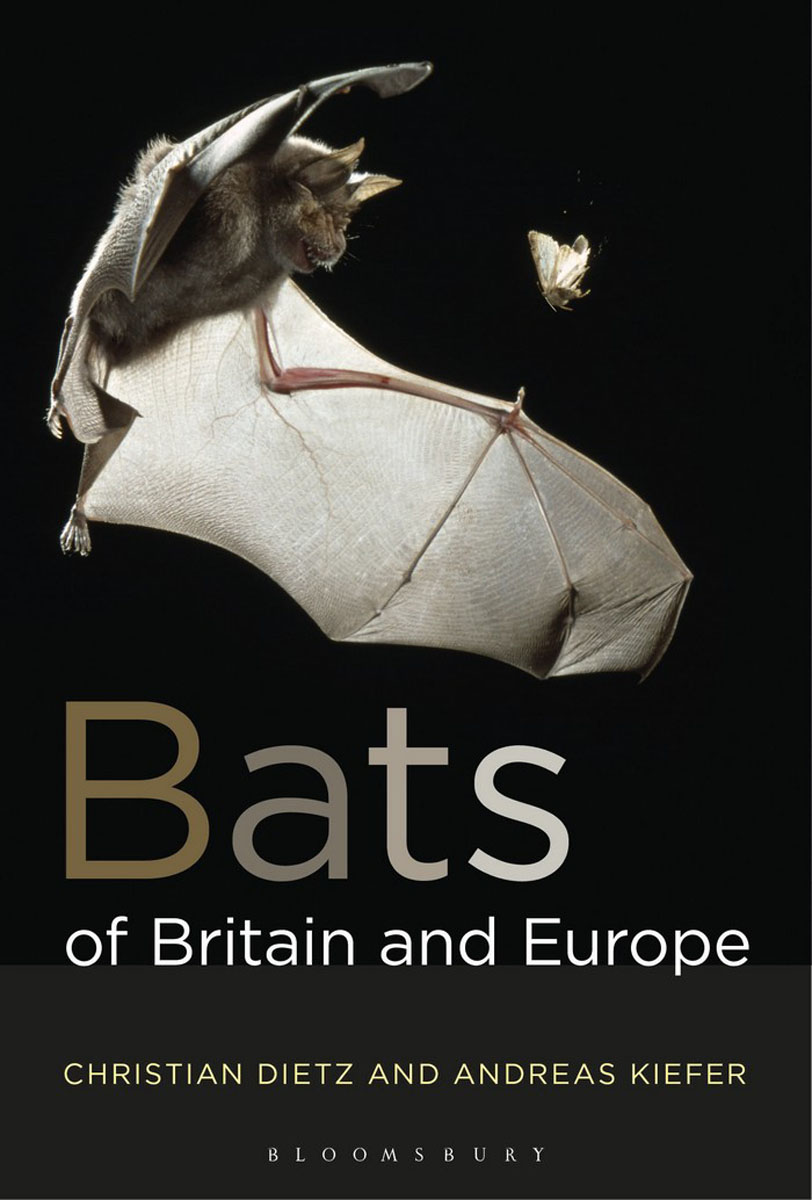 Bats of Britain and Europe green guide to birds of britain and europe