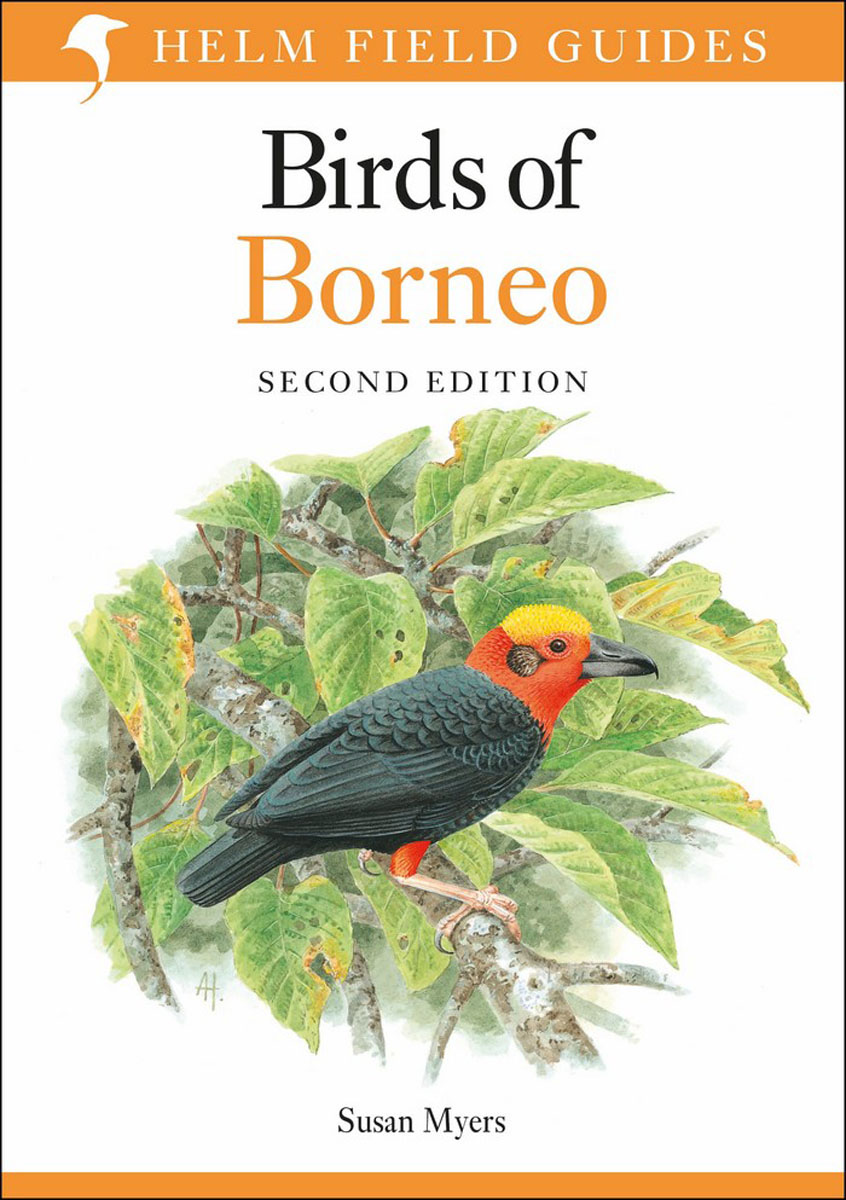 Birds of Borneo 2nd Edition writing down the bones freeing the writer within 2nd edition