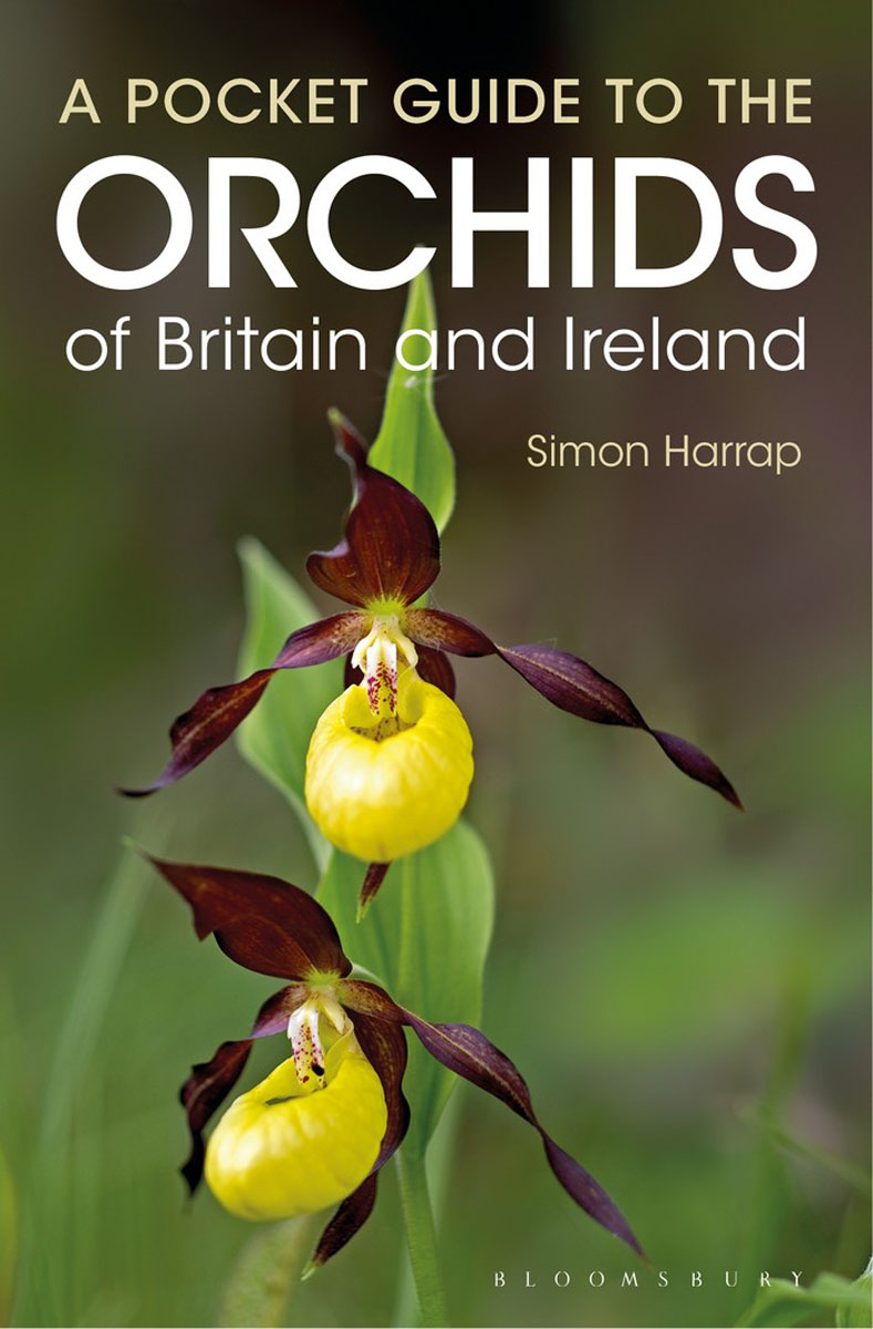 Pocket Guide to the Orchids of Britain and Ireland pocket guide to the ada