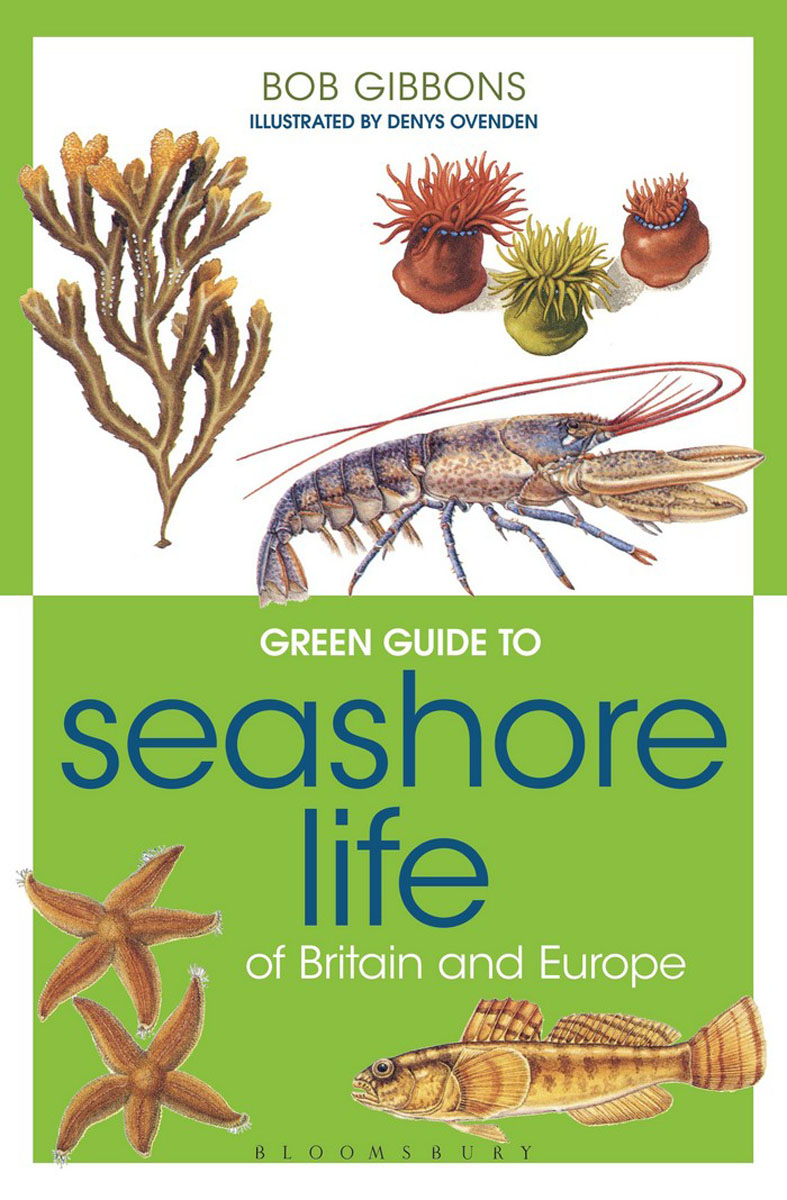 Green Guide to Seashore Life Of Britain And Europe green guide to birds of britain and europe