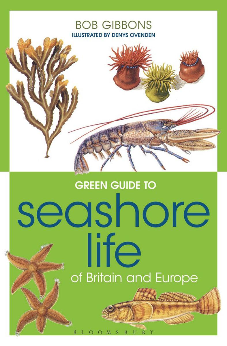 Green Guide to Seashore Life Of Britain And Europe atlantic seashore 72365 41 65