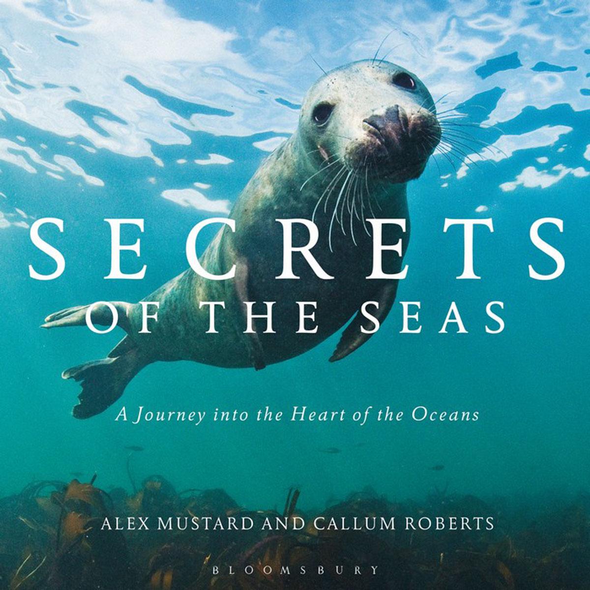 Secrets of the Seas the secrets of happiness