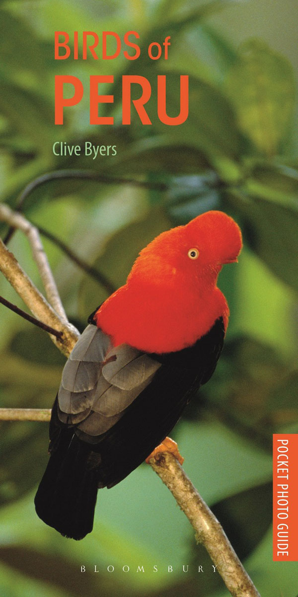 Pocket Photo Guide to the Birds of Peru рубашка мужская the true nature of the heart birds 2014