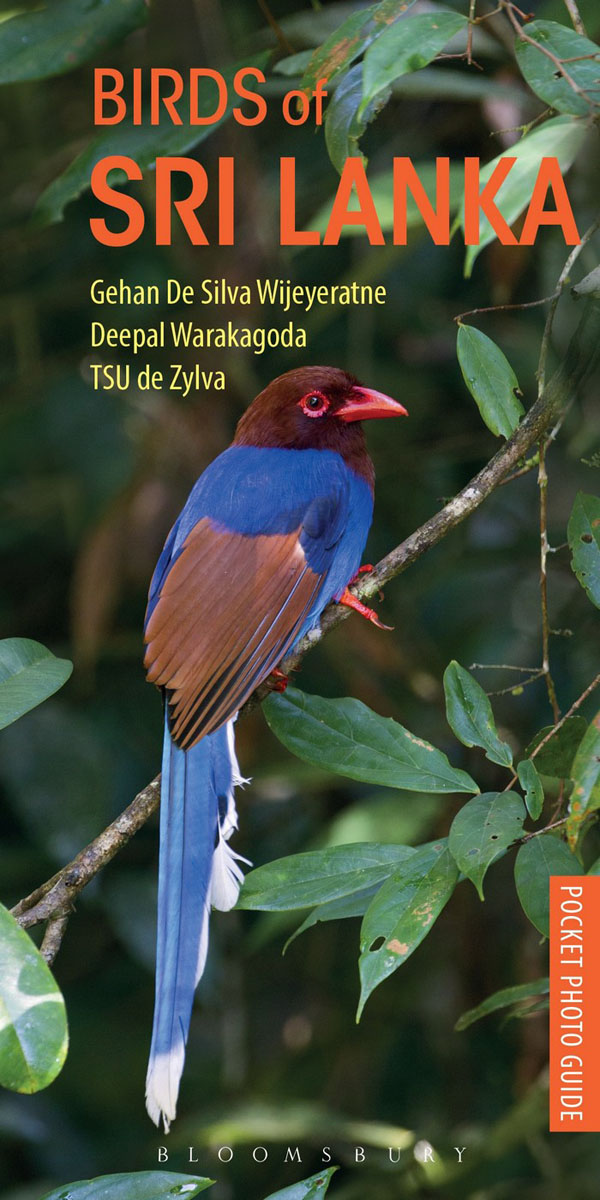 Pocket Photo Guide to the Birds of Sri Lanka рубашка мужская the true nature of the heart birds 2014
