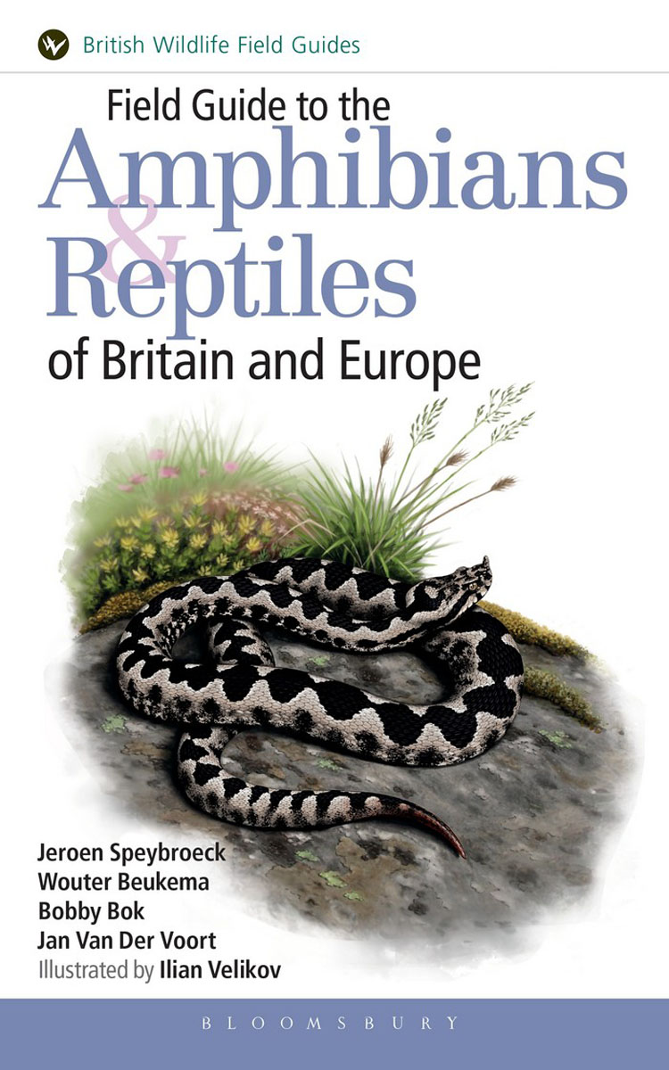 Field Guide to the Amphibians and Reptiles of Britain and Europe green guide to birds of britain and europe
