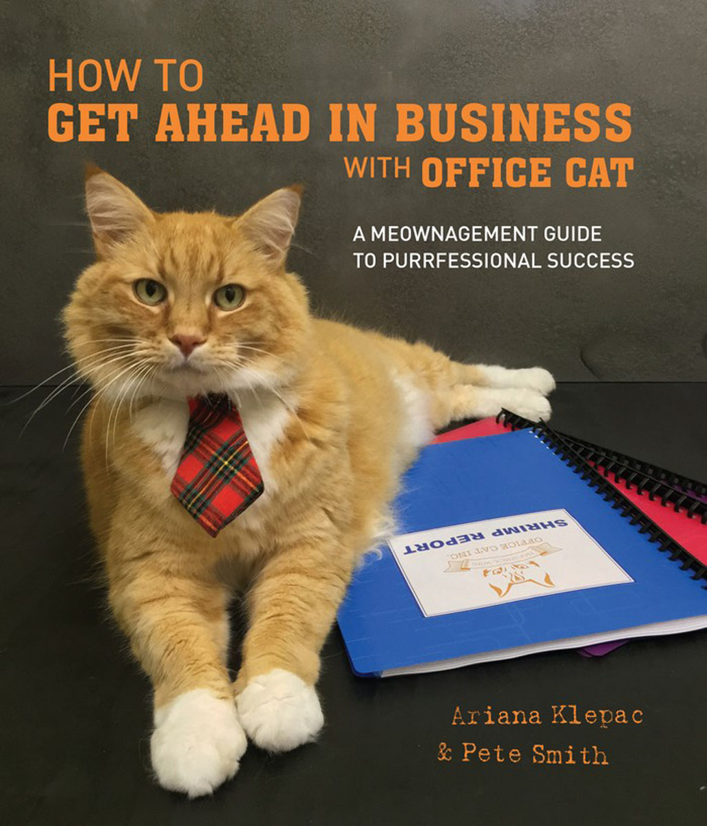 How to Get Ahead in Business with Office Cat frank buytendijk dealing with dilemmas where business analytics fall short