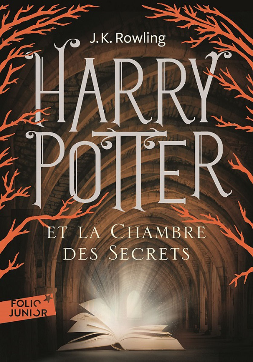 Harry Potter et la chambre des secrets harry potter the chamber of secrets