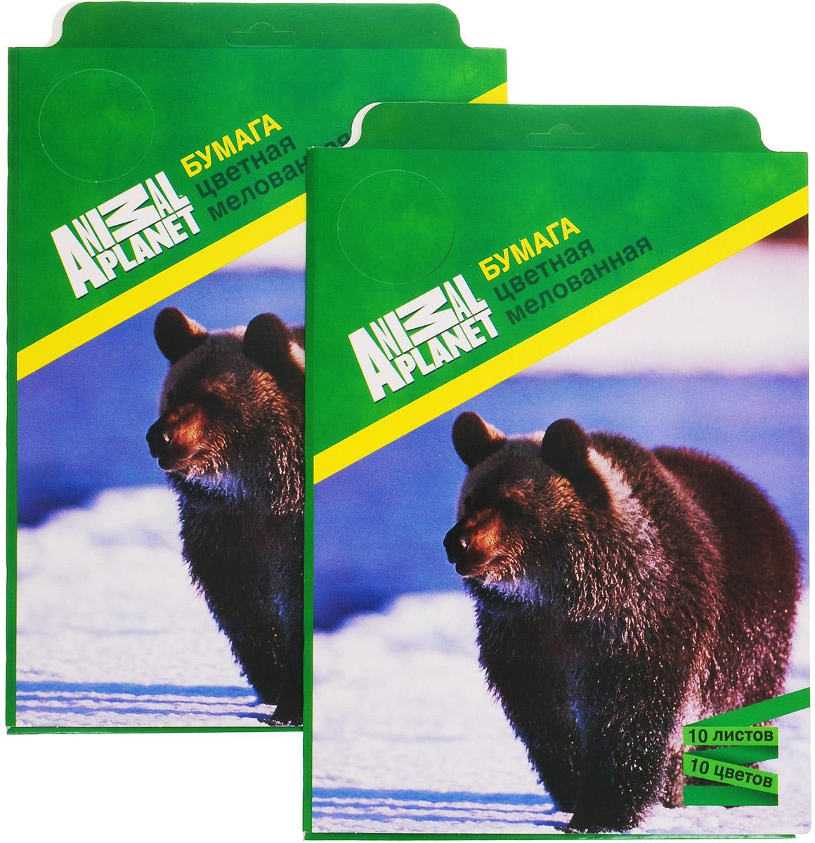 Набор цветной бумаги Action! Animal Planet, мелованная, 10 листов, 2 штAP-CCP-10/10Набор цветной бумаги Action! Animal Planet позволит вашему ребенку создавать всевозможные аппликации и поделки. Набор содержит 10 листов цветной бумаги формата А4. Листы упакованы в оригинальную картонную папку, оформленную в тематике Animal Planet.Создание поделок из картона и бумаги поможет ребенку в развитии творческих способностей, кроме того, это увлекательный досуг.В комплекте 2 набора по 10 листов.Рекомендуемый возраст от 6 лет.Уважаемые клиенты! Обращаем ваше внимание на то, что упаковка может иметь несколько видов дизайна. Поставка осуществляется в зависимости от наличия на складе.