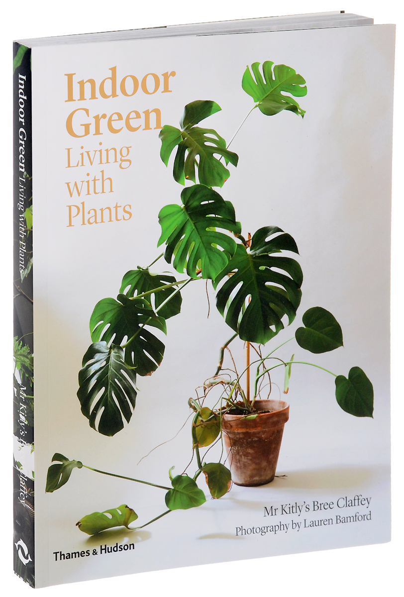 Indoor Green: Living with Plants seeing things as they are