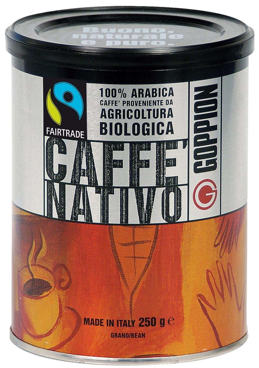Goppion Caffe Nativo кофе в зернах, 250 г ciao ciao caffe rosso classic кофе молотый 250 г