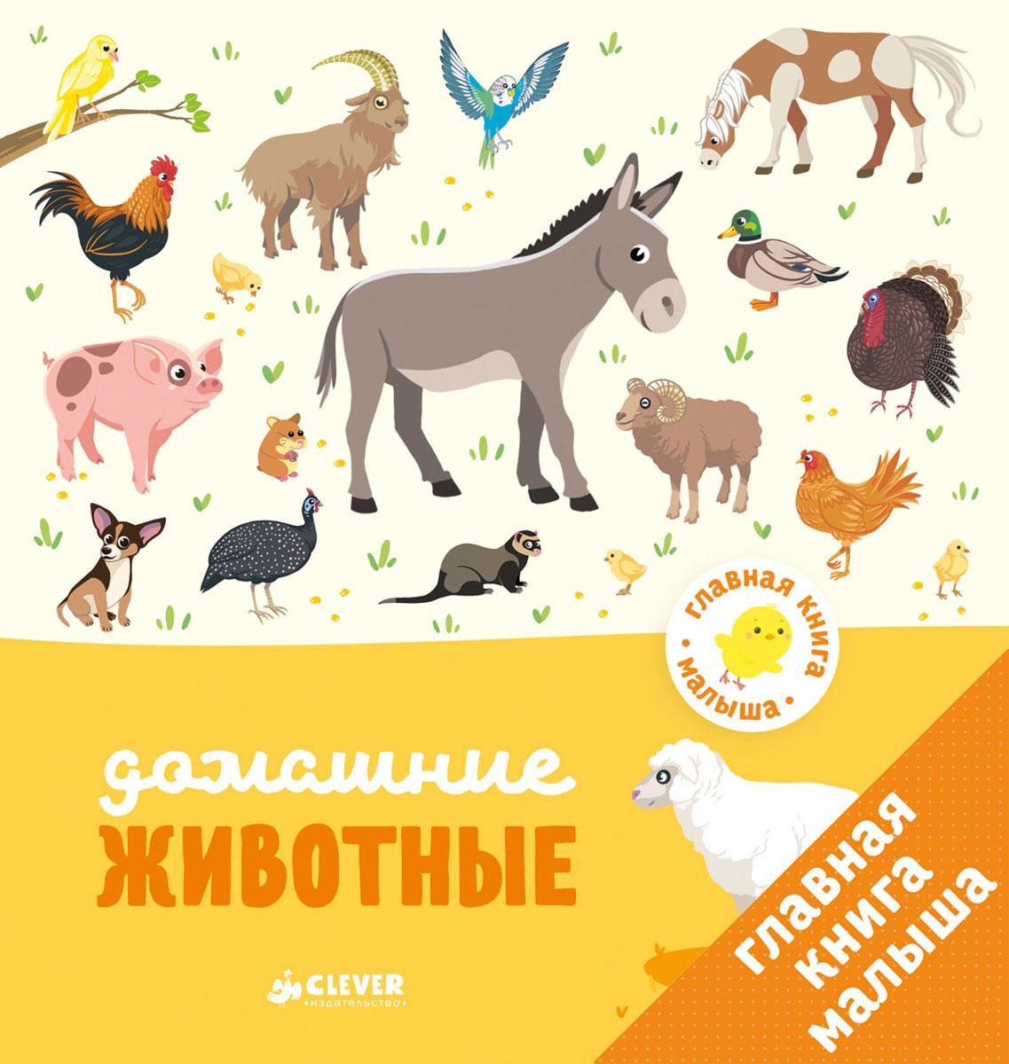 Главная книга малыша. Домашние животные